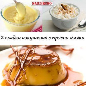 3 рецепти с прясно мляко от нашенско - млечни продукти от българия